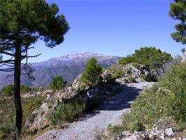 Walking - Spain Away