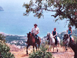Horse Riding - Spain Away