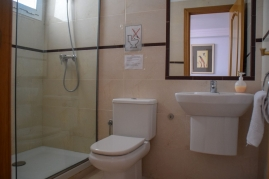 Downstairs Ensuite Shower Room